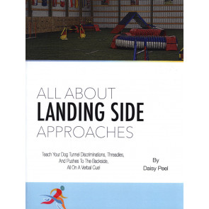 All about Landing Side Approaches*