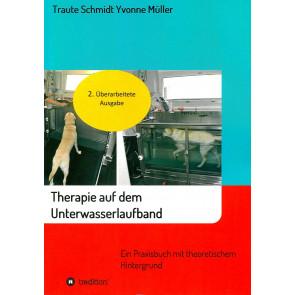 Therapie auf dem Unterwasserlaufband