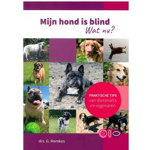 Mijn hond is blind - Wat nu?