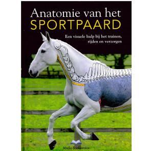 Anatomie van het sportpaard + Pilates en stretching voor paarden