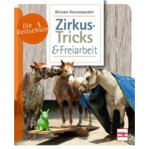 Zirkus-Tricks 7 Freiarbeit