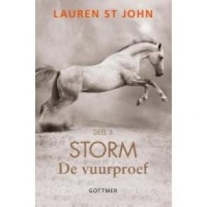 Storm deel 3* - De vuurproef