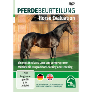 Pferdebeurteilung / Horse Evaluation