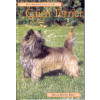 A pet owner's guide to the Cairn Terrier