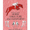 Horse Structure & Movement
