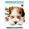 Desperate Dogs (nederlands)