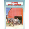 Driving Draft Horses