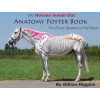 Anatomy poster book Volume 1