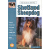 A guide to owning a Shetland Sheepdog