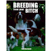 Breeding from your bitch