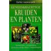 Geneeskrachtige Kruiden en Planten