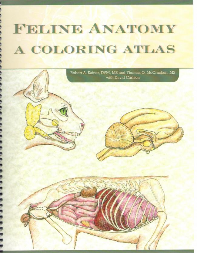 Feline Anatomy a coloring Atlas