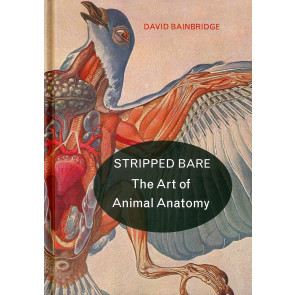 Stripped Bare - The Art of Animal Anatomy