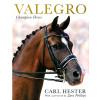 Valegro - Champion Horse