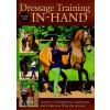 Dressage Training in-hand